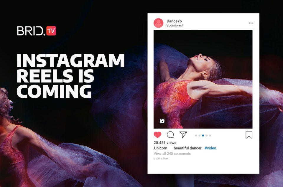 move over tiktok, instagram reels is coming your way