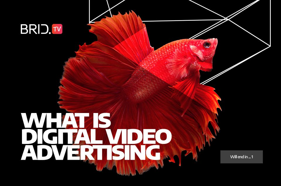 what is digital video advertising