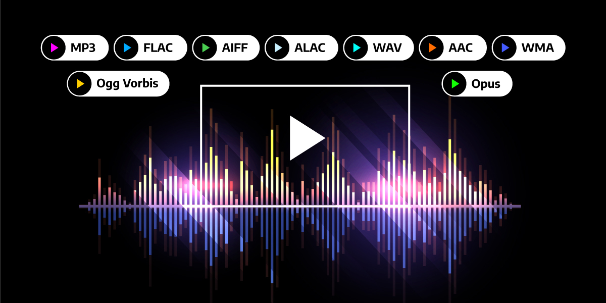 an image highlighting the most common and best audio codecs