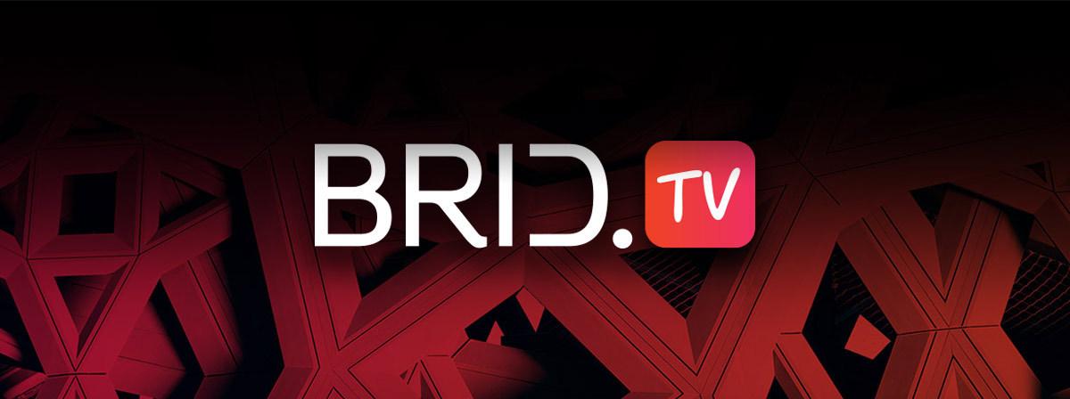brid.tv logo