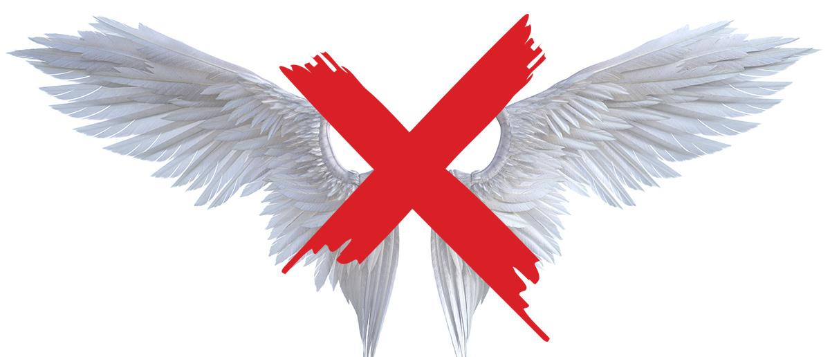 a picture of wings crossed out